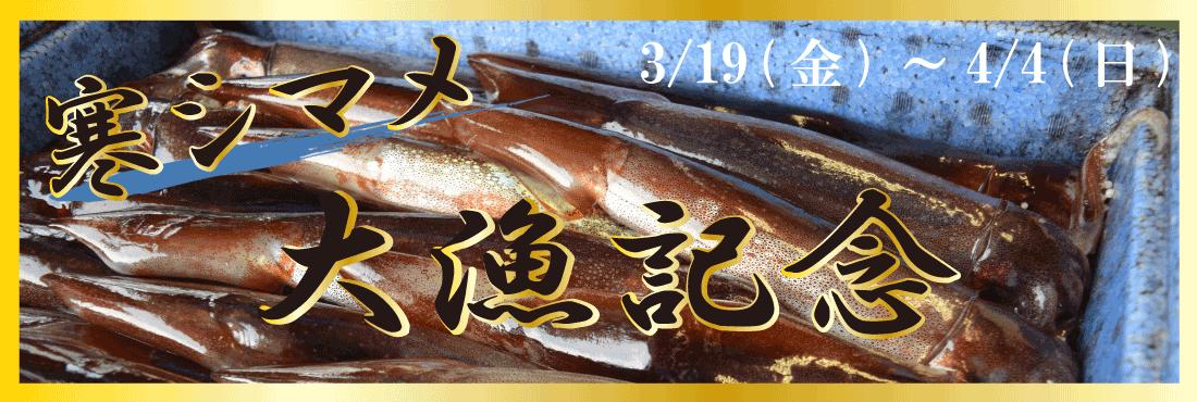 寒シマメ大漁記念